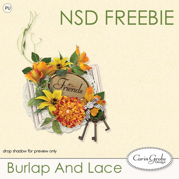 cgd-NSD-burlapfreebie-pv
