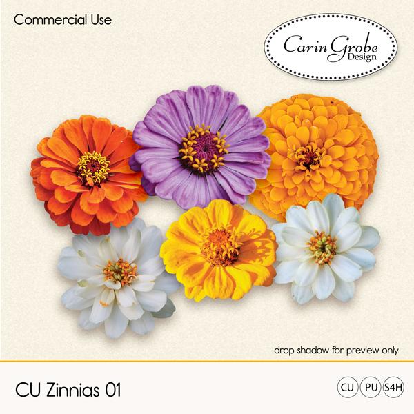 CGD-CUZinnias01