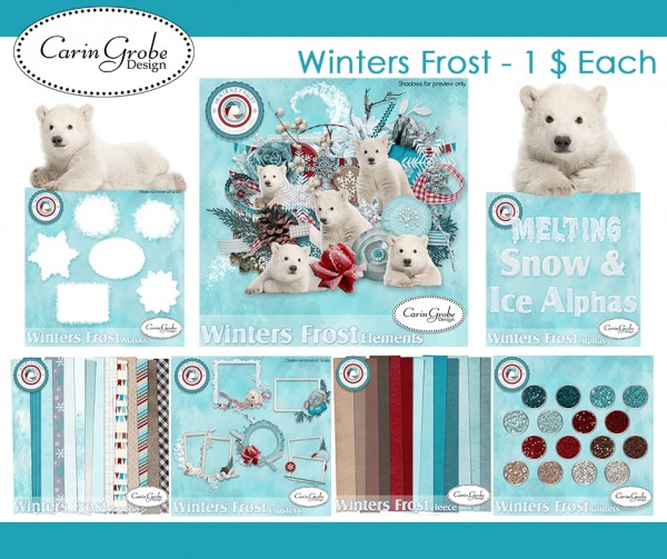 Winters Frost by Carin Grobe Design