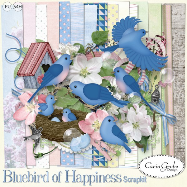 CGD-Bluebird-kitpvtest4