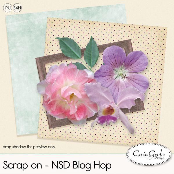 CGD-NSDbloghop16_pv1000