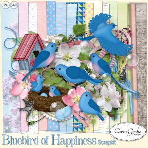 Carin Grobe Design - Bluebird of Happiness