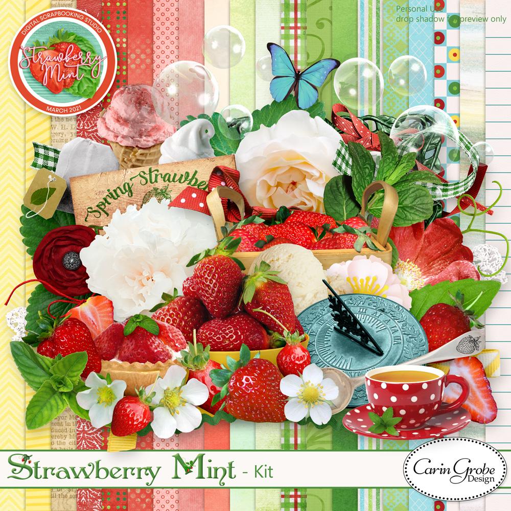 Strawberry Mint Kit by Carin Grobe Design