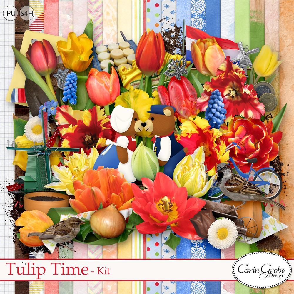 Tulip Time Kit by Carin Grobe Design